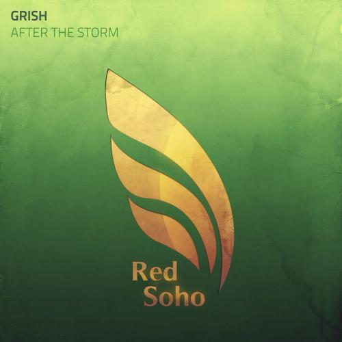 Grish - After The Storm (2021) [FLAC]