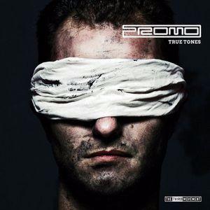 Promo - True Tones (2012) [FLAC]