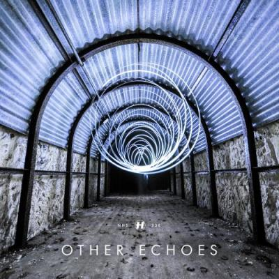 Other Echoes - Run And Hide (2013) [FLAC]
