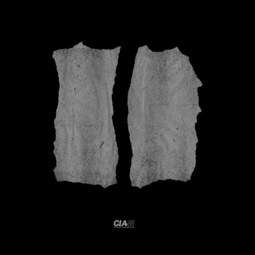 Total Science & L-Side - Fallen Angel / Untouchable (2021) [FLAC]