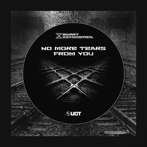 Binary Asymmetrix - No More Tears From You (2021) [FLAC]