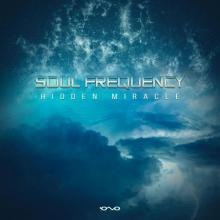 Soul Frequency - Hidden Miracle (2020) [FLAC]