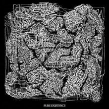 VA - Pure Existence (2009) [FLAC]