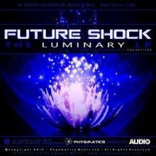 Future Shock - The Luminary LP