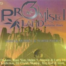VA - Promised Land Three (1997) [FLAC]