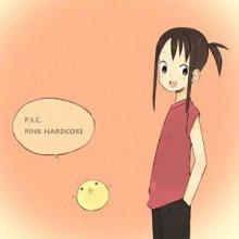 P.S.C. - Pink Hardcore (2008) [FLAC]