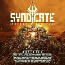 VA - Syndicate Ambassadors In Harder Styles Chapter 2013 [FLAC]