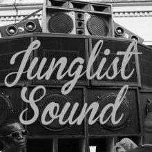 VA - Junglist Sound 007 (2014) [FLAC]