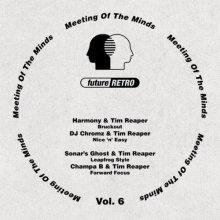 VA - Meeting Of The Minds, Vol. 6 (2021) [FLAC]