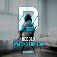 Rebolo - Waiting For You (2020) [FLAC]
