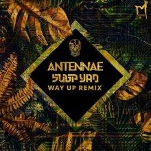 An-Ten-Nae & Subp Yao - Way Up (Subp Yao Remix) (2021) [FLAC]