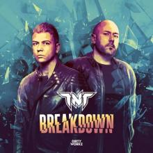 TNT - Breakdown (2021) [FLAC]