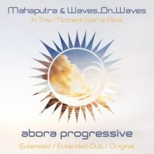 Mahaputra & Waves On Waves - In This Moment Were Alive (2021) [FLAC]