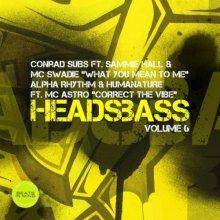 Conrad Subs & Alpha Rhythm & Humanature - Headsbass Volume 6 Part 2 (2021) [FLAC]