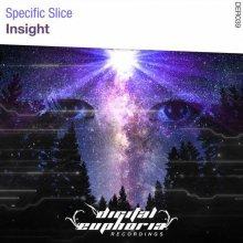 Specific Slice - Insight (2020) [FLAC]