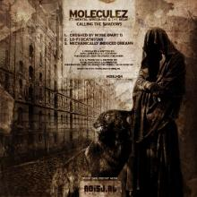 Moleculez feat. Mental Wreckage & The Relic - Calling The Shadows (2010) [FLAC]