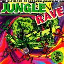 VA - Jungle Rave (1995) [FLAC]