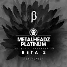 Beta 2 - The Beats Inbetween EP (2016) [FLAC]