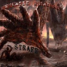Simulated Shadows - Strafe Single (2015) [FLAC]