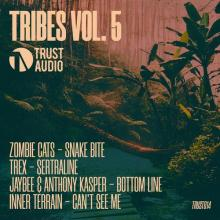 VA - Tribes Vol 5 (2020) [FLAC]
