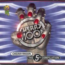 VA - Cherry Moon - The 5th Compilation (1996) [FLAC]