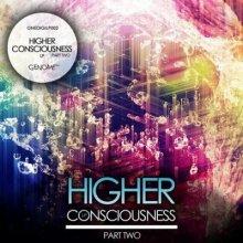 VA - Higher Consciousness Part 2 (2016) [FLAC]