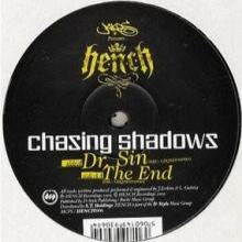 Chasing Shadows - Dr Sin / The End (2009) [FLAC]