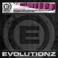 D-Block & S-te-Fan - Music Made Addict (Headhunterz & Wildstylez RMX) (2011) [WAV]