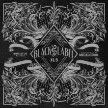 VA - Black Label XL 3 (2016) [FLAC]