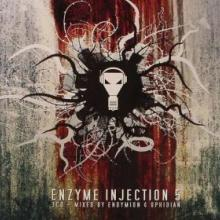 VA - Enzyme Injection 5 (2008) [FLAC]