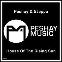 Peshay & Mc Steppa - House Of The Rising Sun (2020) [FLAC]