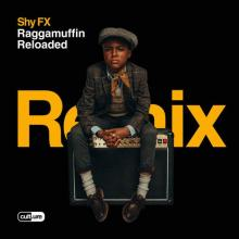 Shy Fx & Lily Allen & Stamina Mc - Roll The Dice (The Sauce Remix) (2020) [FLAC]