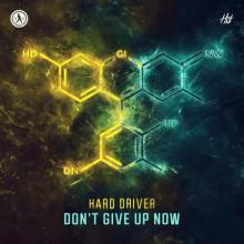 Hard Driver - Don't Give Up Now (2021) [FLAC]