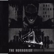 The Horrorist - One Night In NYC (2001) [WAV]