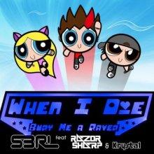 S3RL - When I Die (Bury Me A Raver)