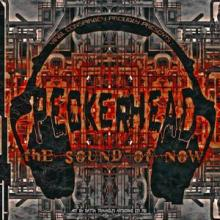 Peckerhead - The Sound Of Now (2011) [FLAC]