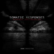 Somatic Responses - Reverse Engineering (2013) [FLAC]