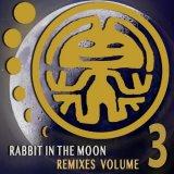 Rabbit In The Moon - Rabbit In The Moon Remixes Volume 3 (2020) [FLAC]