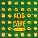 VA - Sound Of Acid Core Vol 5 (1998) [FLAC]