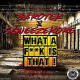 Barotek & SqueezeKore - What A Fk Is That (2021) [FLAC]