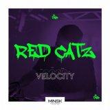 Red Catz - Velocity (Original Mix) (2021) [FLAC]