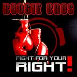 Boogie Bros - Fight For Your Right (2009) [FLAC]